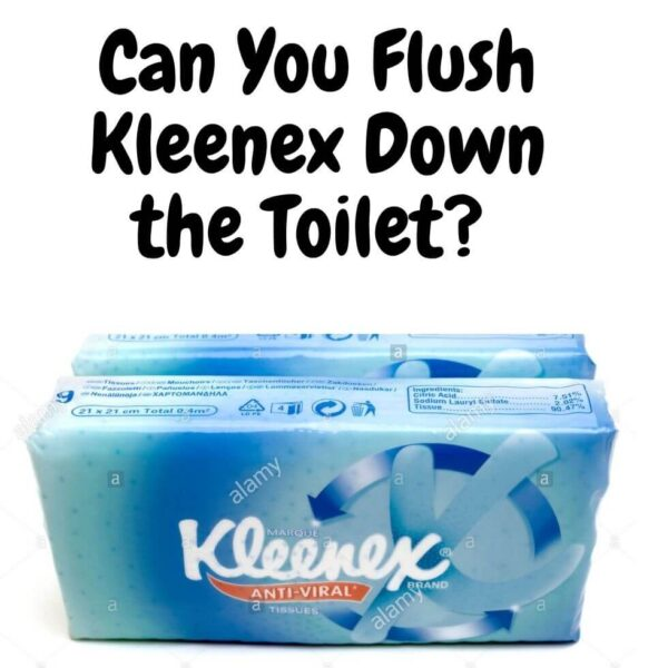 Can You Flush Kleenex Down the Toilet