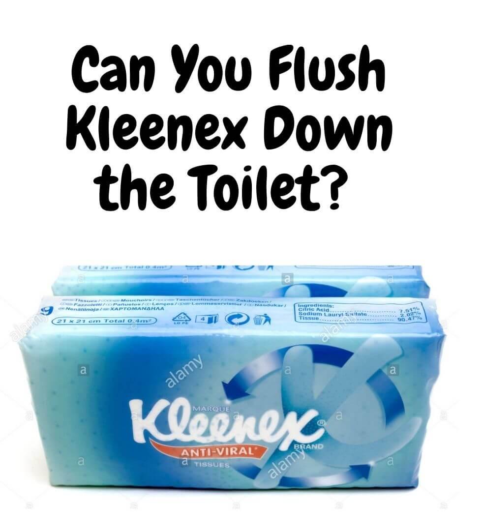 Can You Flush Kleenex Down the Toilet